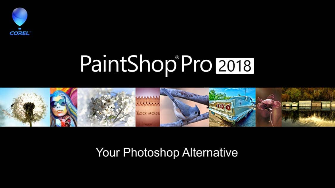 Discover the affordable alternative to Photoshop